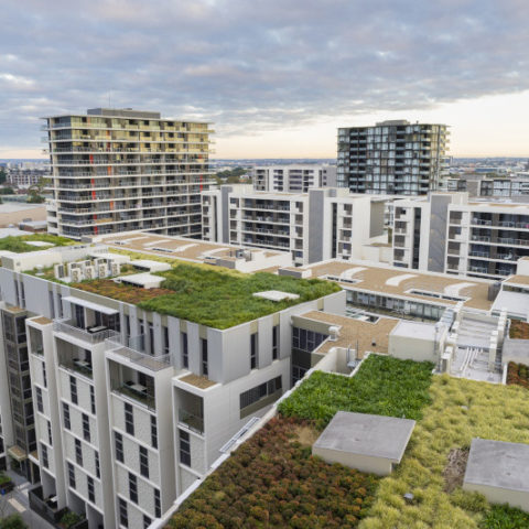 Rooftop gardens on urban apartment buildings